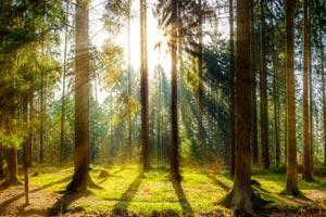 abenteuer_naturparkfuehrungen