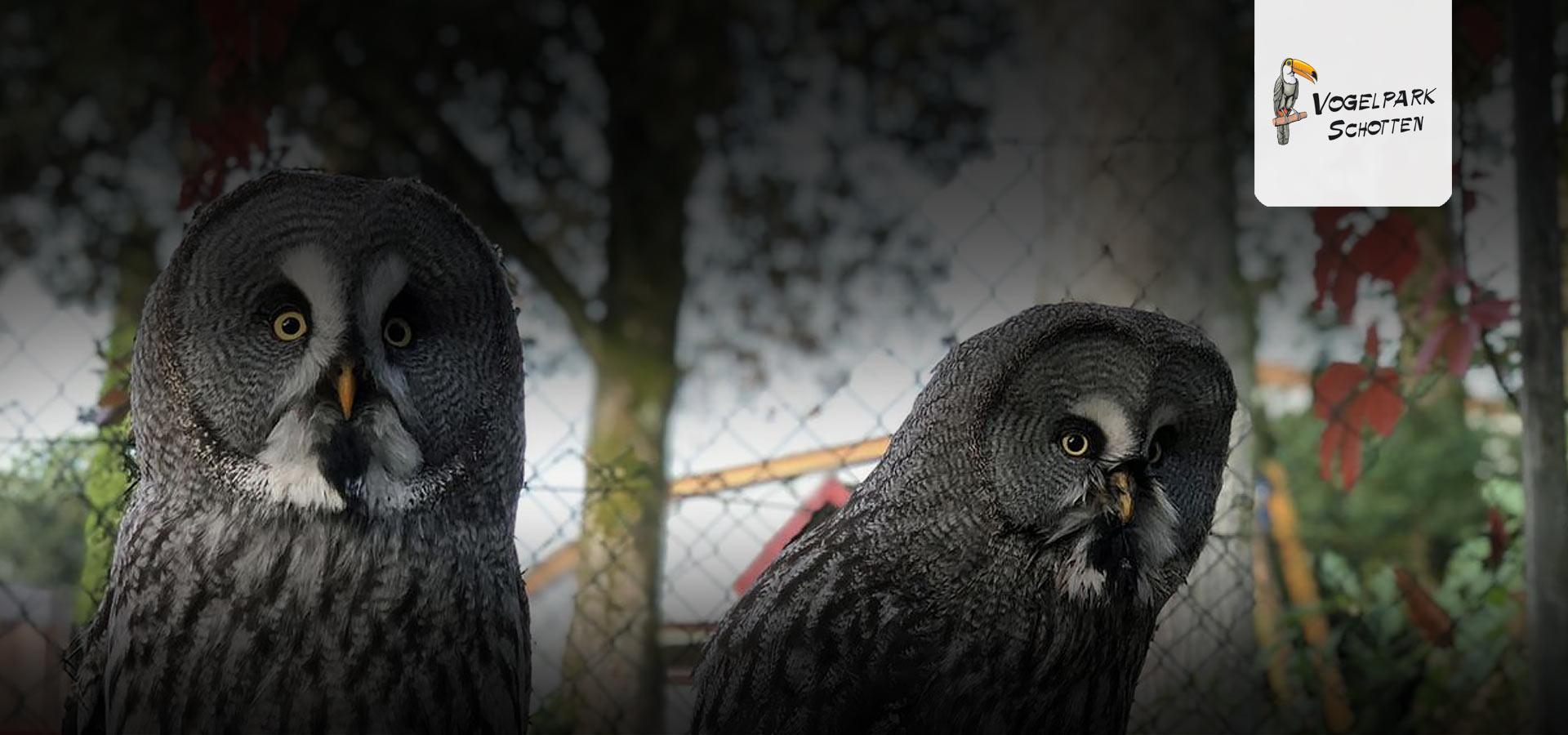 top_vogelpark