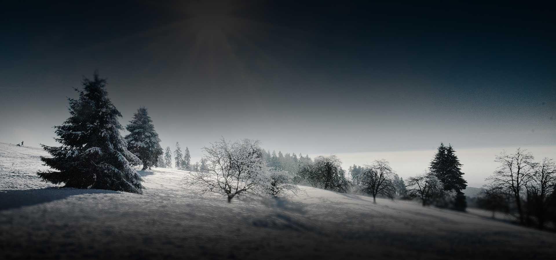 top_winter