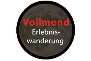 logo_amond