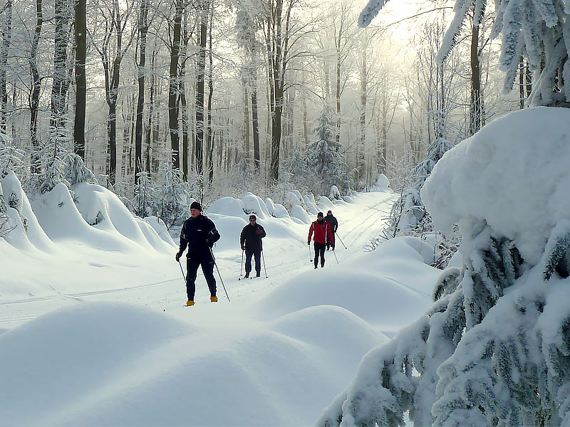 bild_winter5