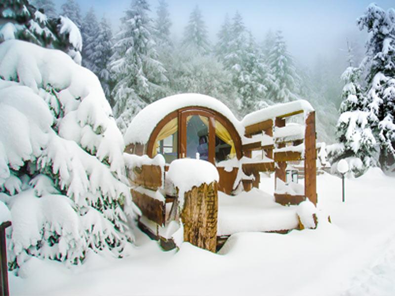 bild_winter6
