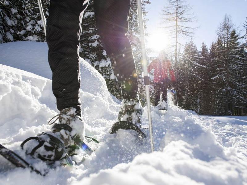 bild_winter12a